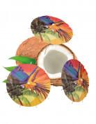 Karibische Cocktailspieße mit Schirmchen Insel-Motiv 6 Stück bunt 18cm
