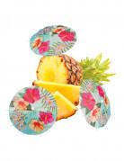 Cocktail-Schirmchen Hawaiiparty Tischdeko 6 Stück bunt 18x20cm
