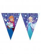 Frozen™-Wimpelgirlande