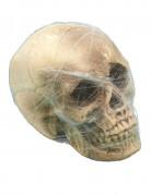 Deko-Totenkopf mit Spinnennetz beige