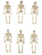 Halloween Dekoskelette 6 Stück beige 15cm