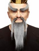 Chinesischer Bart und Augenbrauen Set 2-teilig grau