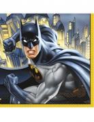 Batman™ Servietten aus Papier 16 Stück 33 x 33 cm