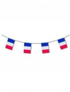 Französische Flaggen-Girlande Frankreich-Fanartikel 5m