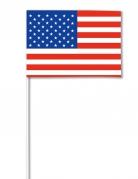Papierfahne USA 14 x 21 cm