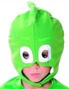 Gecko-Maske PJ Masks™-Lizenzartikel grün