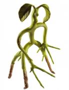Bowtruckle-Figur Phantastische Tierwesen™-Lizenzartikel grün 28cm