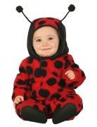 Marienkäfer-Kostüm für Babys Tierkostüm rot-schwarz