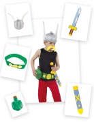 Asterix-Accessoire-Set Asterix und Obelix™ 5-teilig bunt