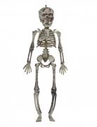 Skelett-Hängedeko Halloween-Deko grau 30cm