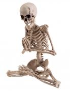 Skelett-Deko Yogapose Halloween-Deko beige 18 cm